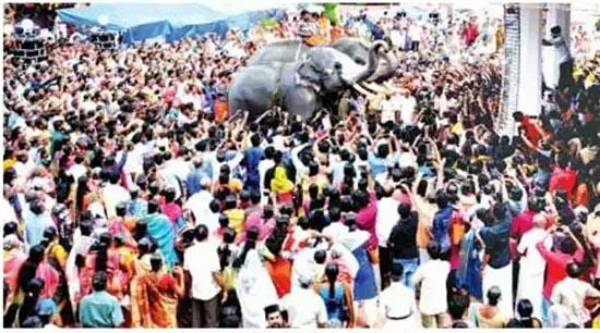 Elephants join faithful pilgrims at the Kothamangalam feast for St. Baselios Yeldho