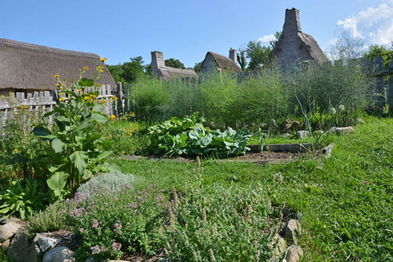Backyard Garden in Plymouth Plantation