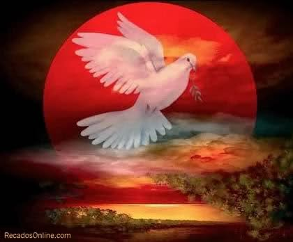 Dove - Symbolic Representation of Holy Spirit