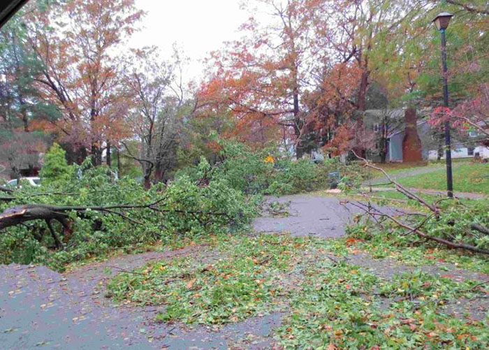 Hurricane Damage in Staten Island, NY